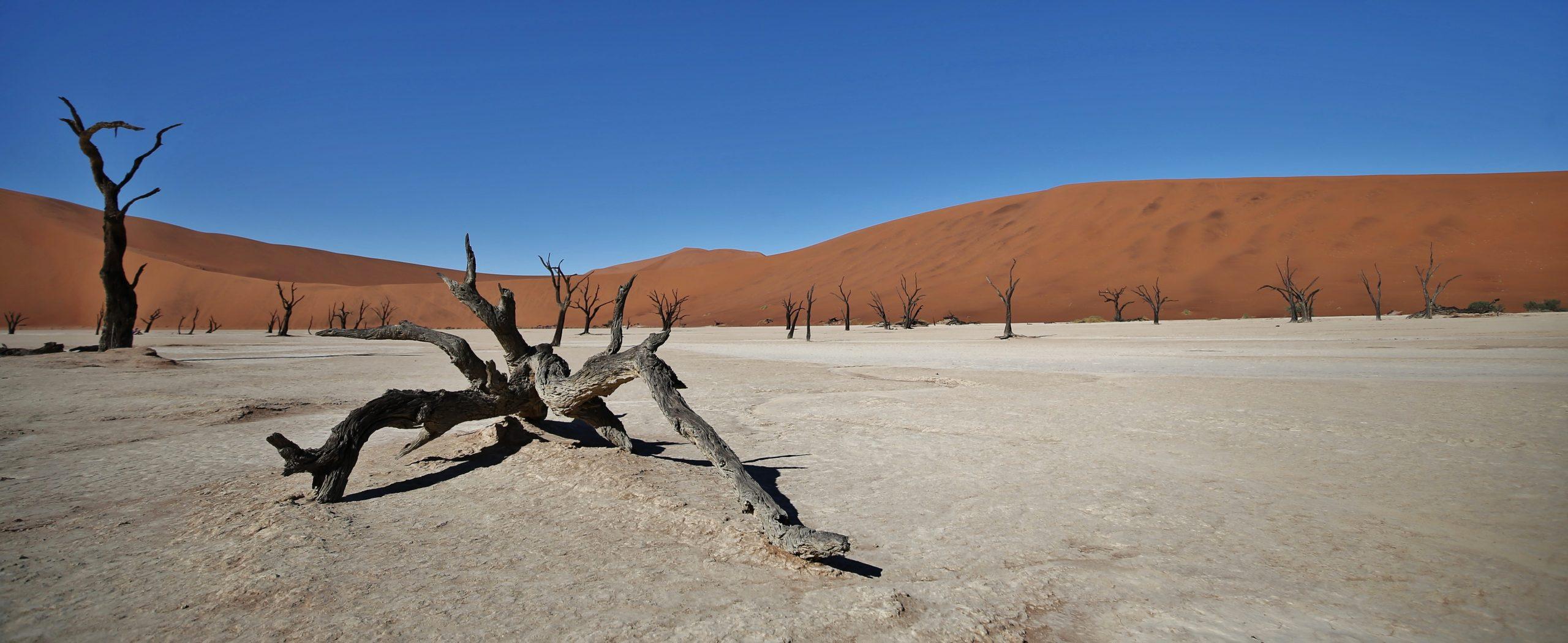 Sossusvlei,Namibie