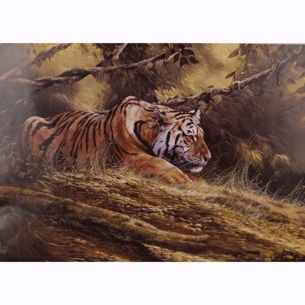 Tiger Resting